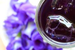 Chłodno motyliego grochu sok Zdjęcie Royalty Free