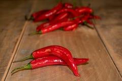 chłodno pepper Zdjęcie Stock