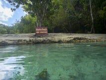 Chłodno szmaragdowy basen Fotografia Stock