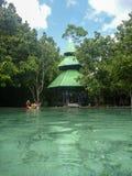 Chłodno szmaragdowy basen Obraz Royalty Free