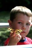 chłopcy motyl Obrazy Stock