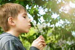 chłopiec dandelion Zdjęcia Royalty Free
