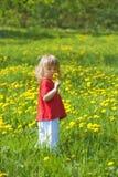 chłopiec dandelion Obrazy Royalty Free