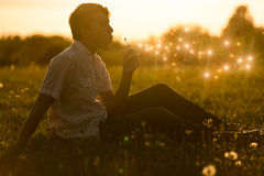 Chłopiec dmucha dandelion przy zmierzchem Obraz Stock