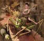 chłopiec elf Zdjęcia Stock