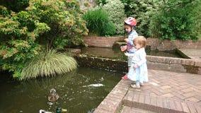 Chłopiec i dziewczyna karmimy kaczki Zdjęcia Royalty Free
