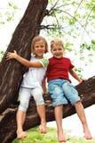 Chłopiec i dziewczyny obsiadanie na drzewie Fotografia Royalty Free