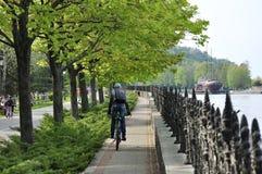 Chłopiec jedzie bicykl przez parka Zdjęcia Stock