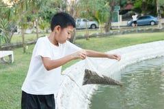 Chłopiec karmienia ryba Fotografia Royalty Free