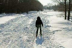 Chłopiec narciarstwo w zima parku Fotografia Royalty Free