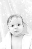 chłopiec nowa Fotografia Stock