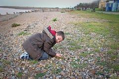 Chłopiec patrzeje dla skorup Obrazy Royalty Free