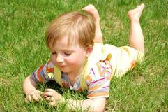 chłopiec trawa zdjęcie stock