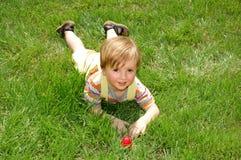 chłopiec trawa obrazy royalty free