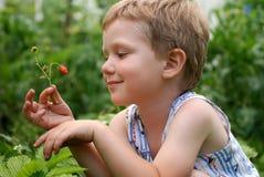 chłopiec truskawki zdjęcia royalty free