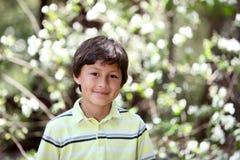 Chłopiec w lasowych seriach Obraz Royalty Free