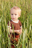 Chłopiec w pszenicznym polu Zdjęcia Royalty Free