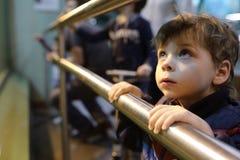 Chłopiec w zoo Zdjęcie Royalty Free