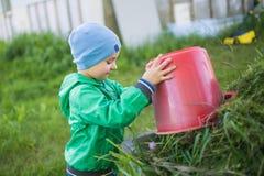 Chłopiec wywala trawy od czerwonego wiadra Zdjęcia Stock