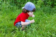 Chłopiec z blowballs w lecie zdjęcia royalty free
