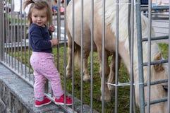 Ch?ri girl Poney regarder mignon zoo photographie stock