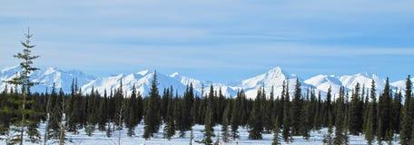 Chaîne d'Alaska en hiver Photographie stock libre de droits