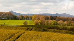 Chaîne de Bennachie dans le printemps Photo stock