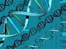 Chaîne de caractères d'ADN au-dessus de fond d'ADN Image stock
