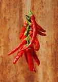 Chaîne de caractères de Chillis rouge contre la rouille Photos stock