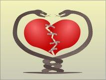 Chaîne de caractères de coeur de serpent Images stock