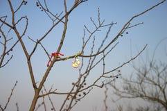 Chaîne de caractères sur des branchements d'arbre Photos stock