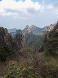 Chaîne de forêt et de montagne Images stock
