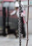 Chaîne de Frost Photo libre de droits