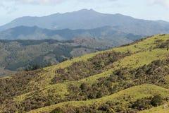 Chaîne de Moehau en péninsule de Coromandel Image libre de droits