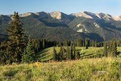 Chaîne de montagne anthracite dans la réserve forestière de Gunnison Photo stock