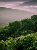 Chaîne de montagne de Boston image stock