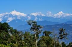 Chaîne de montagne de Kanchenjugha avec des arbres Images stock