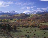 Chaîne de montagne de Sneffels, Co Photo stock