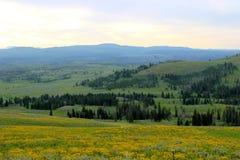Chaîne de montagne en parc national de yellowstone photographie stock libre de droits