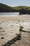 Chaîne et corde sur une plage avec la mer et des collines à l'arrière-plan Image libre de droits
