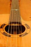 Chaînes de caractères de guitare Images stock