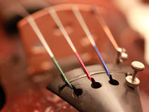 Chaînes de caractères de violon Photo stock