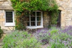 Chałupa ogród z fragrant lawendą Obrazy Royalty Free