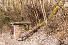 Chałupa robić kamień po środku lasu fotografia stock