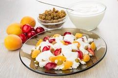 Chałupa ser z jogurtem, morelami i słodkimi wiśniami, rodzynki Fotografia Royalty Free