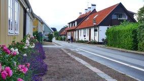 Chałupa w Szwecja zdjęcie wideo