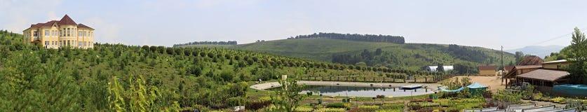 Chałupy i wiosny jezioro Psiarni arboretum Kwitnąca dolina Fotografia Royalty Free