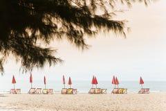Cha-上午海滩, 库存照片