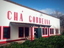 Cha Gorreana, plantation de thé et usine Photo stock