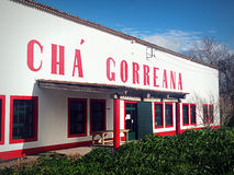 Cha Gorreana, Teeplantage und Fabrik Stockfoto